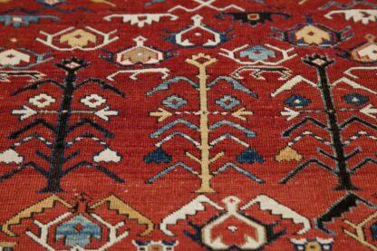 Kuba solmasoyud carpet