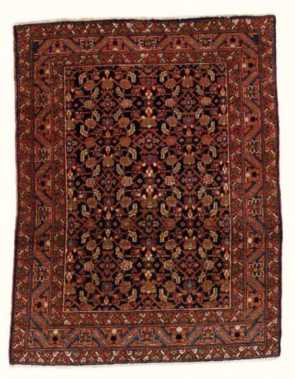 Bakhshayesh allover rug