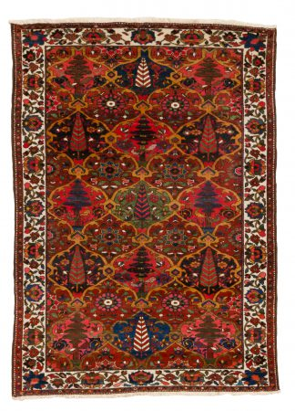 Bakhtiari Medium carpet