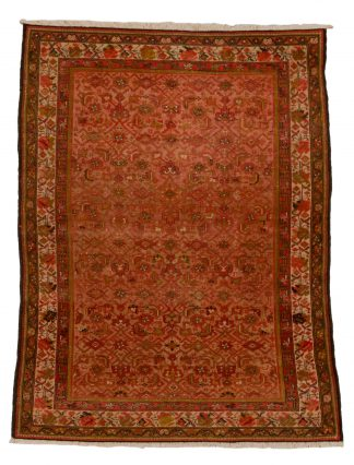 Malayer Allover carpet