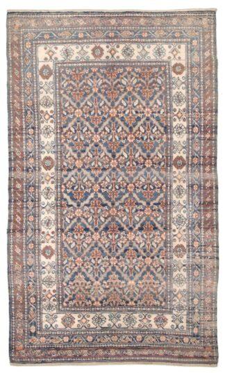 Indian Coton